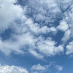 今日はどんより曇り空