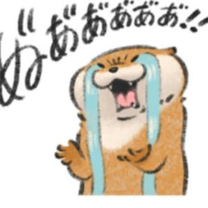排卵期~高温期のイライラがマジでキツい
