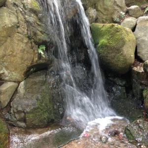 ヨルシカの楽曲、音色から水を表現方法を探ってみるーピアノ編(カバー動画付き)