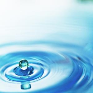 水水しい音楽とは??ー「みずみずしさ」って漢字でどう書く??ー