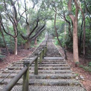 今日の散歩(I緑地)