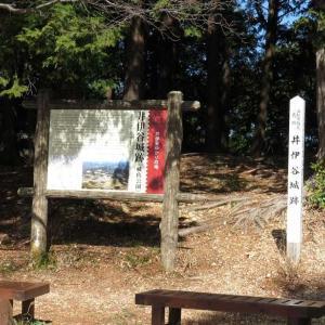 井伊谷城址(ぷち登山)