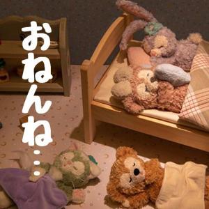 TDS【昨年とのおねんね比較】モフモフ界の睡眠事情