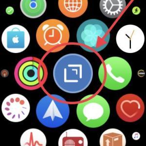 Apple WatchのメモアプリはDraftsで決まり