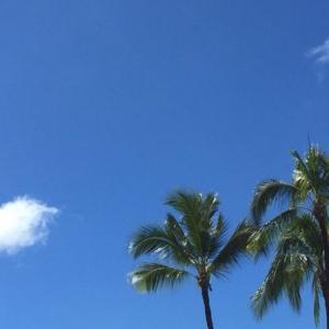 ハワイでハーレーに乗る時に知っておいた方がいいこと