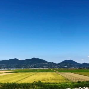 横島干拓(熊本県玉名市)見てある記