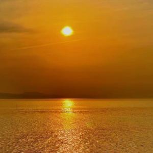 スマホで撮った荒尾干潟の夕陽