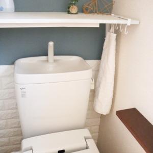 3重苦。暗く狭く収納ないトイレを模様替え