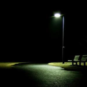 寂しさの理由