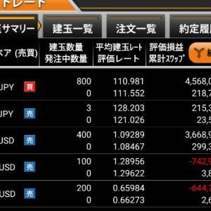 2/21今週の成績 -531万円