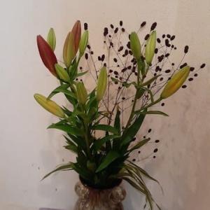 ユリのお花はド満開。