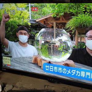 NHK広島報道局に取材していただきました!