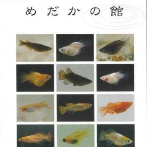 メダカカタログNo.7(2008年)の挨拶より