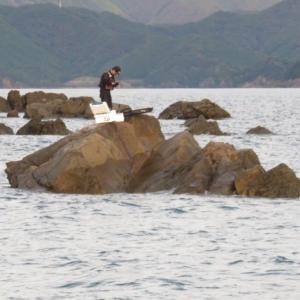 磯釣り~紀伊長島~