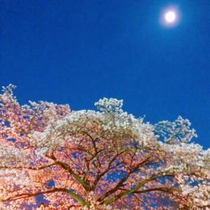明日はおひつじ座の新月