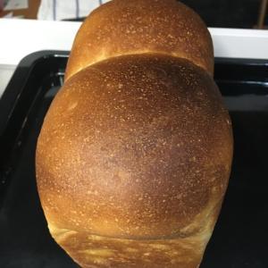 中力粉で作るフランス食パンのズボラレシピメモ