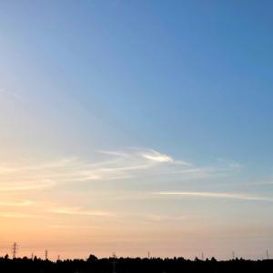 朝陽。明るい