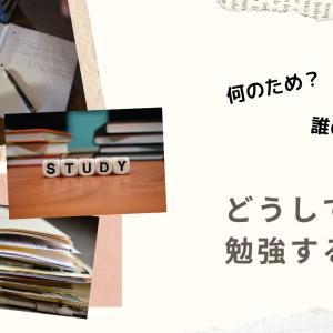 勉強しなさい、とは言いたくない。受験生を抱えた私が今までを振り返って思うこと。