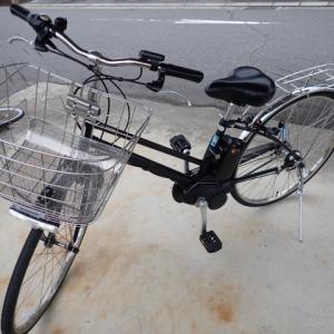 蒲郡(1) 無料レンタル自転車と「かわせみ」さんのワタリガニ丼