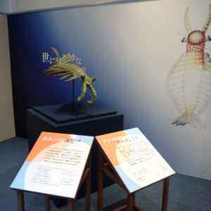 愛知旅行その2 蒲郡市生命の海科学館でレア本拝見