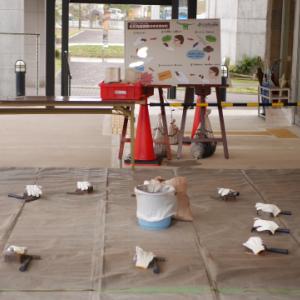 兵庫県立人と自然の博物館の「化石発掘体験セミナー」に行ってきました