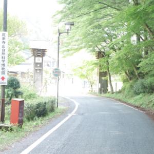 東三河の自然史系博物館・科学館めぐりとコーヒー旅行「鳳来寺山自然科学博物館」