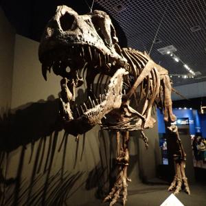 国立科学博物館の「恐竜博 2019」に混雑覚悟で行ってきました