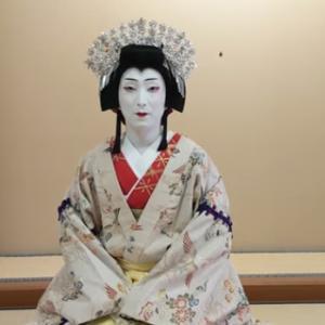 見ました!_歌舞伎座「八月花形歌舞伎」出演者より皆様へ【歌舞伎ましょう】