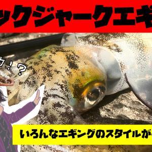 【10月4週】エギングでアオリイカ以外が釣れたって良いっ!!【釣果報告】