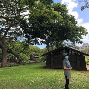 リリウオカラニ植物園のウォーキングとまだ座れないスタバ✨
