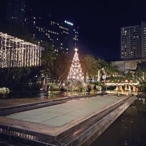グリーンベルト クリスマスイルミネーション。成田に帰ります。