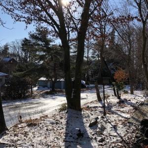 冬の山小屋は人生の楽園。