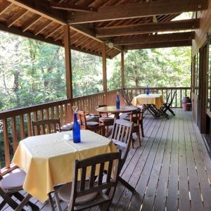 自然食料理と子供たちの元気に元気をもらう@「カフェ・ピアニッシモ」(八ヶ岳南麓)