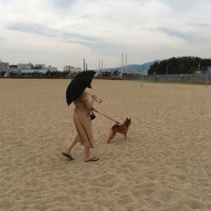 芦屋浜総合運動公園^_^おススメなのだ