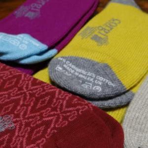 corgi(コーギー)の靴下