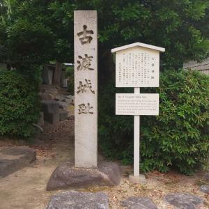 現代語釈  徳川実紀  5   老臣達の争い