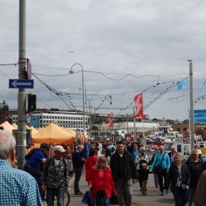 【フィンランド】ヘルシンキのマーケットスクエアとカモメ