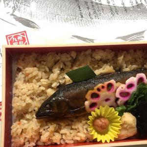 九州駅弁ランキング3年連続1位!頼藤商店の「鮎屋三代」鮎の甘露煮弁当♪