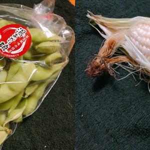 枝豆・とうもろこし・夏野菜直売!『ファームはんぜむどん』(流山セントラルパーク)