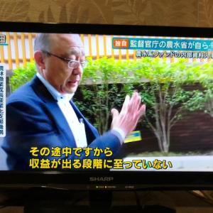 開業めどない居酒屋に3億円 政府系ファンドが出資