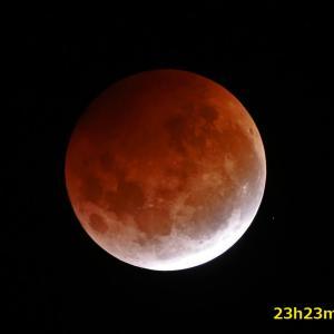 極寒のBlood Moon 鑑賞