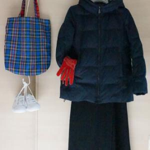 マリンフランセーズのスカートでネイビー多め50代着まわしコーデ、でも赤が強すぎ?