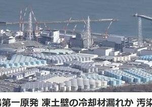 Why does Jap persist to nuclear plant?