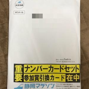 徒然日記29〜近況報告〜