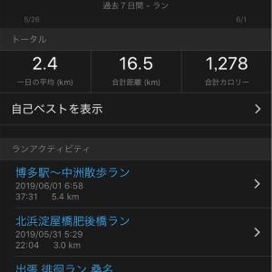 【たこやき】出張徘徊ラン16.4km【坦々麺と酢豚】