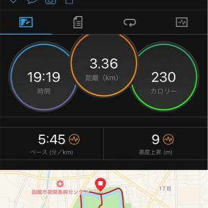 2019函館マラソン完走記②〜【大会本編】ハーフ迄は順調!天国編【〜ハーフまで】