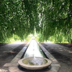 NYでヨーロッパを感じる素敵な公園【Untermyer Park and Gardens】