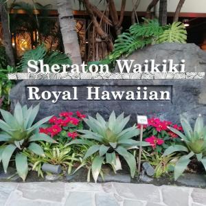 シェラトンワイキキホテルに泊まってきました