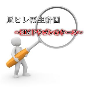 ベタ 尾ヒレ再生計画~HMホワイトドラゴンのケース②~