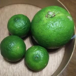 のどと心の潤いに手作り柚子はちみつ